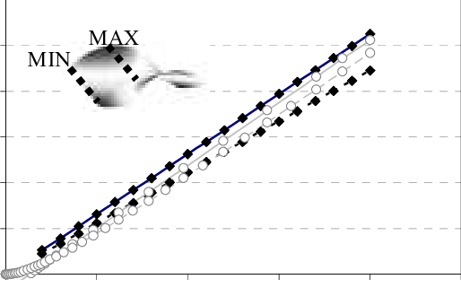 Experimental vs simulated out-of-plane displacements