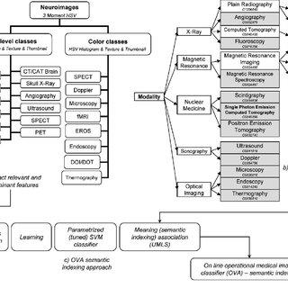 (PDF) Ontology for fMRI as a Biomedical Informatics Method