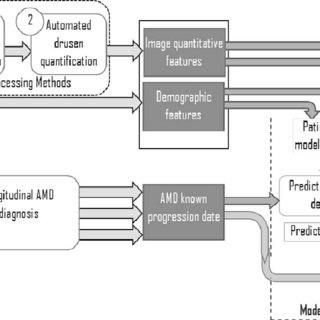 (PDF) Quantitative SD-OCT Imaging Biomarkers as Indicators