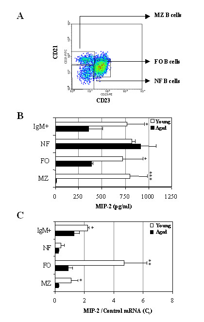 Age-associated alterations in CXCLI chemokine expression