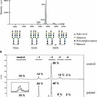 BFA-induced retrograde transport kinetics of control and