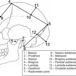 (PDF) Examining secular change in craniofacial morphology