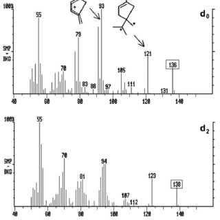 Chiral main column chromatogram and MS spectra of