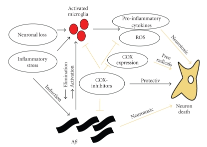 possible interactions of COX-inhibitors and Alzheimer's
