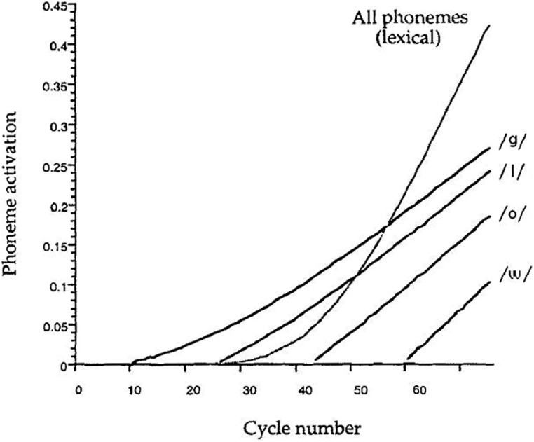 Lexical and non-lexical activation of the phonemes of the