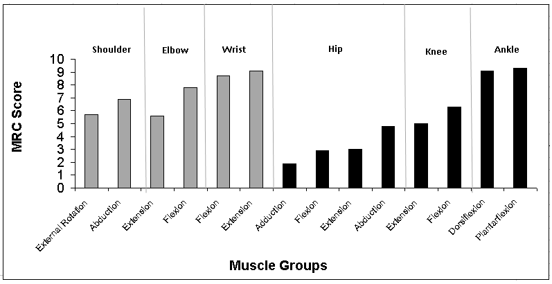 Average Manual Muscle Test (MMT) using the Medical