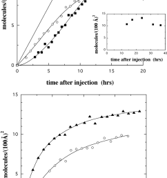 a adsorbed amount as a function of time after injecting myoglobin for cu  [ 850 x 1476 Pixel ]