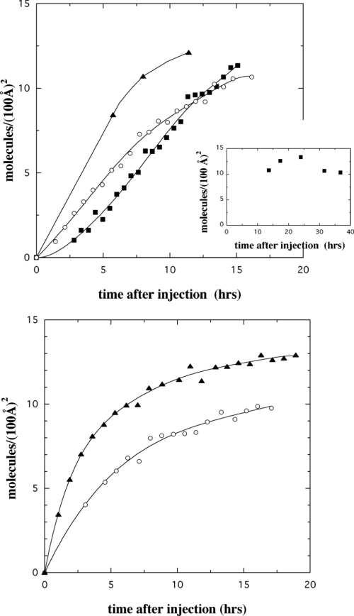 small resolution of  a adsorbed amount as a function of time after injecting myoglobin for cu