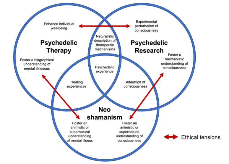 Examples of institutional aims for a psychedelic session. Overlaps of... |  Download Scientific Diagram