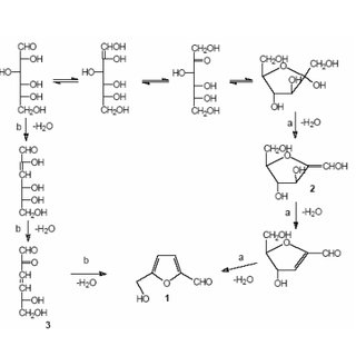 (PDF) The Important Role of Hydroxymethylfurfural in