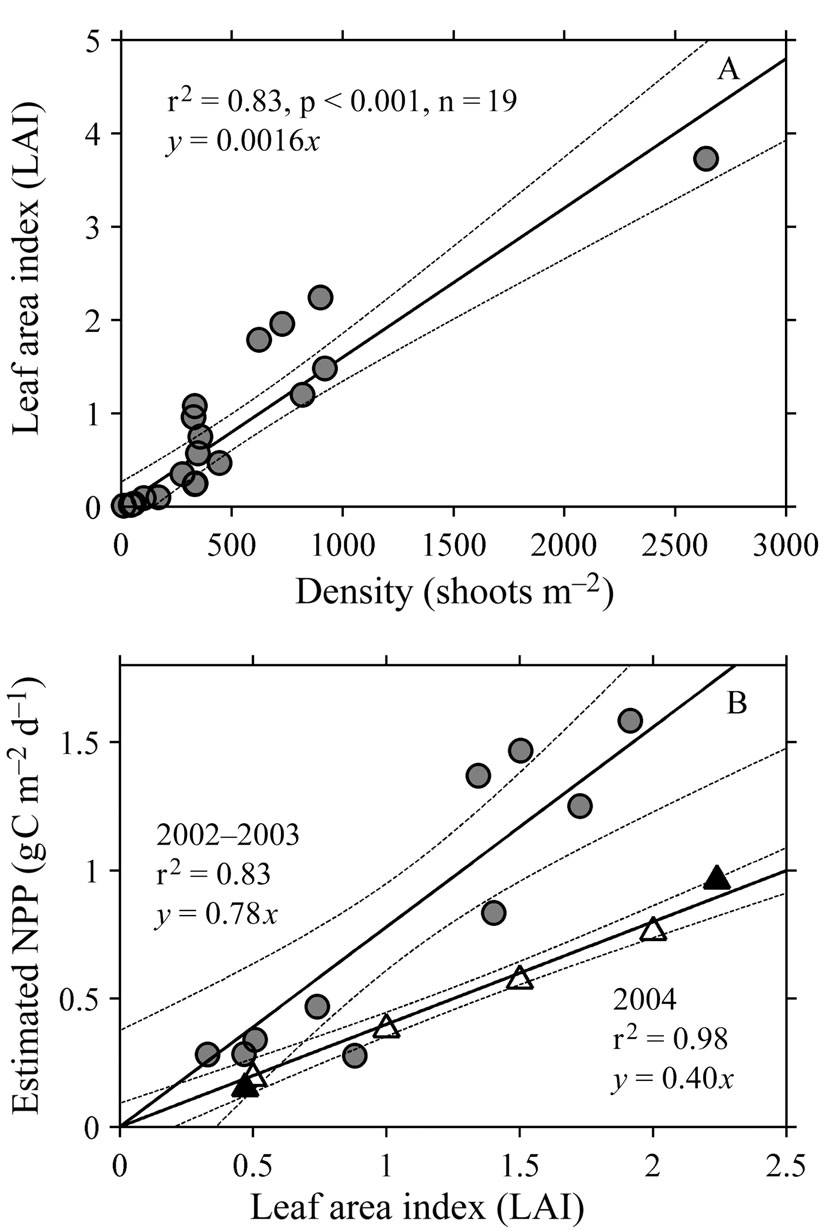 (A) Relationship between seagrass shoot density and