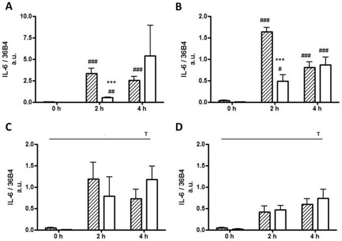 IL-6 gene expression levels of 3T3-L1 preadipocytes