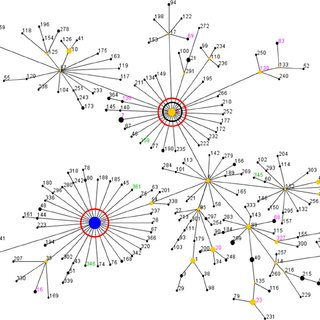 eBURST analysis of S. epidermidis CC2 using all 312 STs