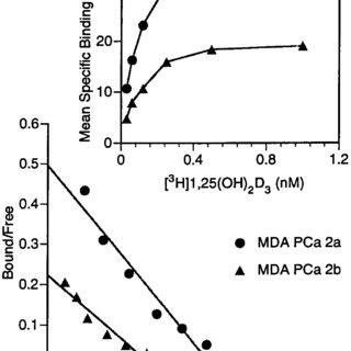 (PDF) 1 ,25-Dihydroxyvitamin D3 Inhibits Prostate Cancer