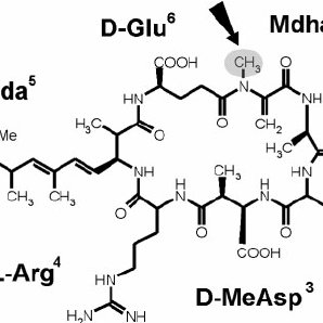 (PDF) Natural occurrence of Microcystin synthetase