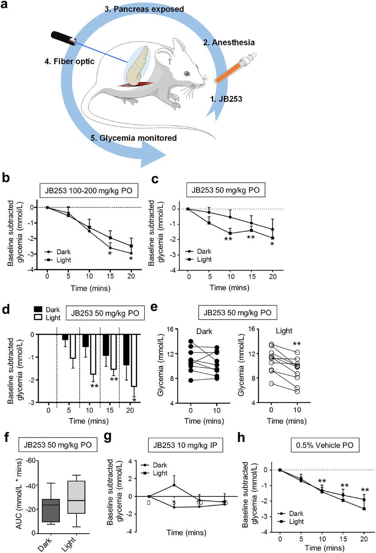 Optical control of glucose homeostasis using JB253. (a