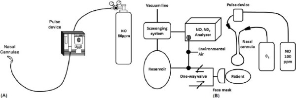 Examples of pulsed inhaled nitric oxide delivery systems