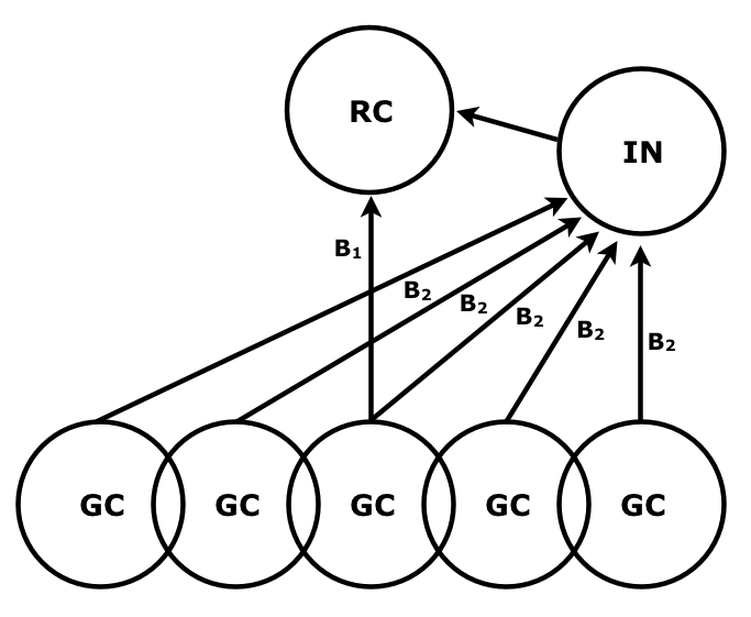 Schematic pattern of connectivity in the dLGN circuit. RC