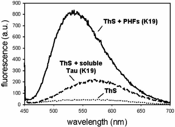 Fig. (4). Thioflavin-S (ThS) fluorescence can be used to