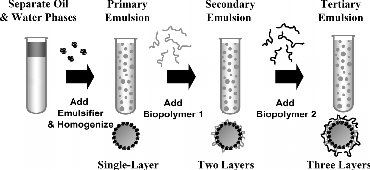 Multilayer emulsions are formed by adding polyelectrolytes