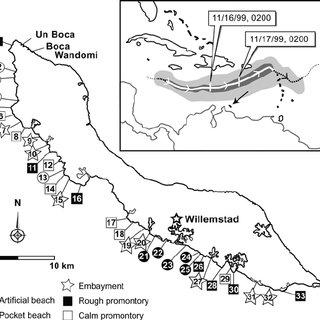 (PDF) Damage to the leeward reefs of Cura ao and Bonaire