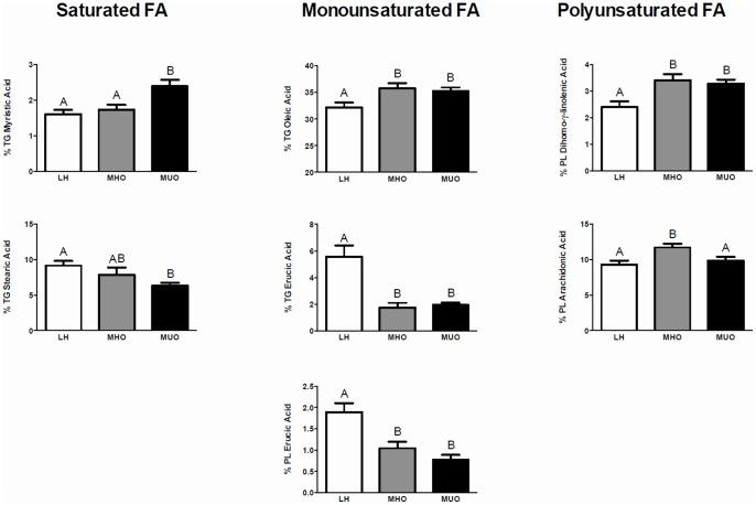 Fatty acids (FAs) meeting a VIP>1 in our OPLS-DA model