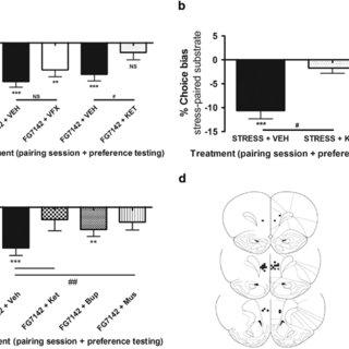 (PDF) Distinct Neuropsychological Mechanisms May Explain