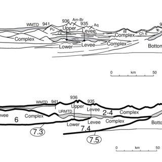 (PDF) Amazon Fan sedimentation: the relationship to