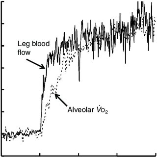 (PDF) VO2 slow component: physiological and functional