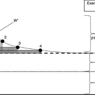 Distribution of cardiac output () at rest and during