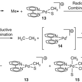 Mechanisms considered for the formation of ethane from Pd
