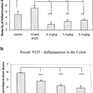 Effect of MTA1 antisense PONs on the growth and invasion