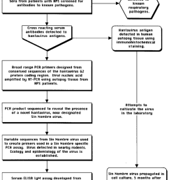 flow diagram describing the events leading to the identification of the microbe associated with hps and [ 850 x 1037 Pixel ]