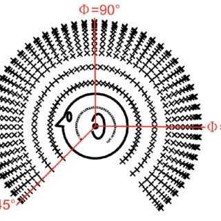(a) A regular Kagome lattice: edges are massless springs