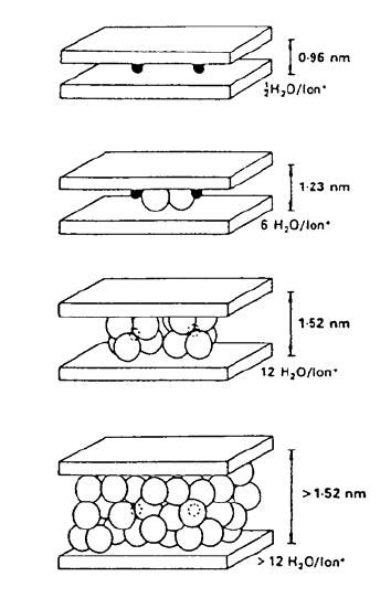 Innercrystalline swelling of sodium montmorillonite