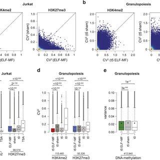 (PDF) ELF-MF exposure affects the robustness of epigenetic