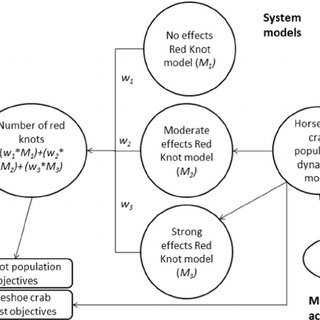 Schematic of a structured decision making and adaptive