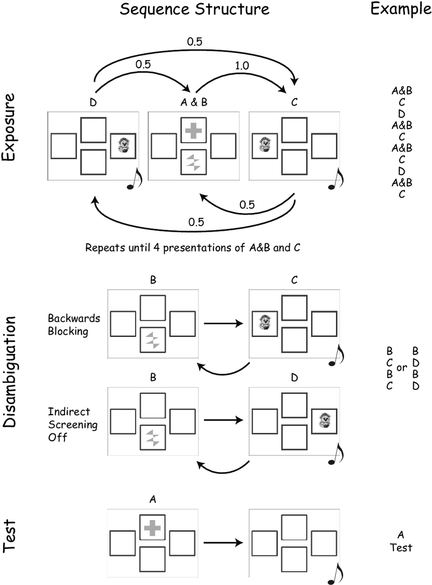 medium resolution of schematic of experiment 2 design in the experiment the disambiguating trials a or