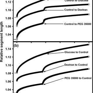 Graphs showing extension of representative tissue segments
