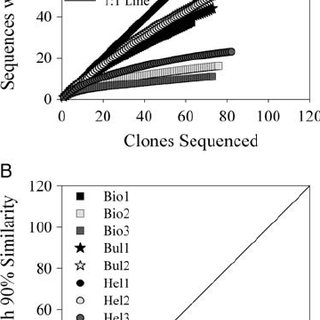 Abundance of bacterial 16S rRNA sequences ordered by