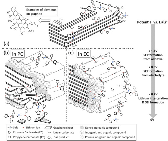 Schematic of the anode SEI formation process showing (a