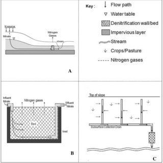 (PDF) The Role of Nitrate in Controlling Denitrification