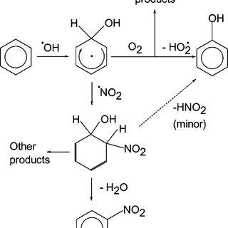 Scheme 1. Benzene transformation pathways leading to
