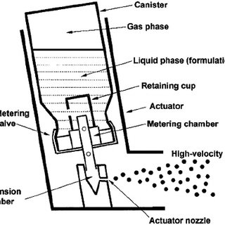 Components of a pressurized metered-dose inhaler. (From