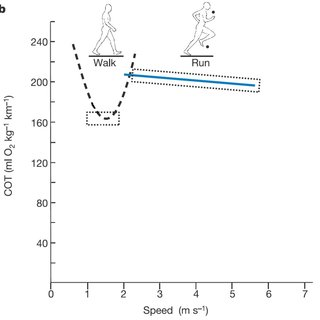 Water samples relative to Global meteoric water line (GMWL
