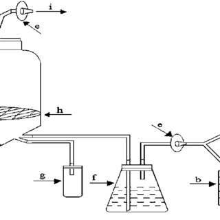 (PDF) Application of bioreactor systems for large scale