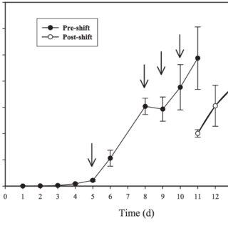 (PDF) Unraveling the regulation of nitrogen assimilation