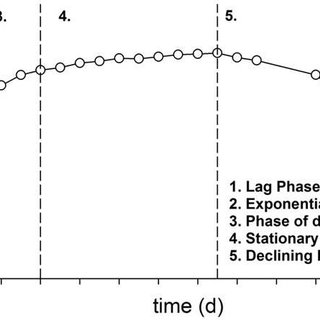 4. Plankton abundances measured at station L4, Western