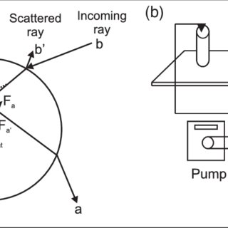(a) Ray diagram showing the gradient force and scattering