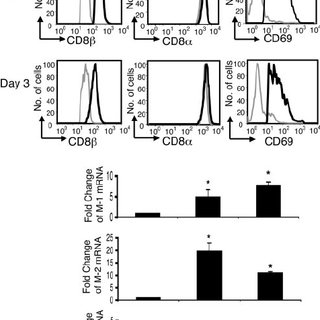 (PDF) Differential Expression of the Human CD8 Splice